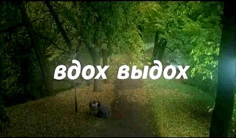 http://www.foto.timofeeff.ru/2007/vdoh-vydoh.jpg